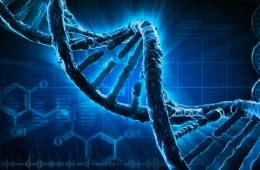 The How & Why: Radiation vs human DNA