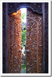 Yaacov Apelbaum The Doors of Ubud-12