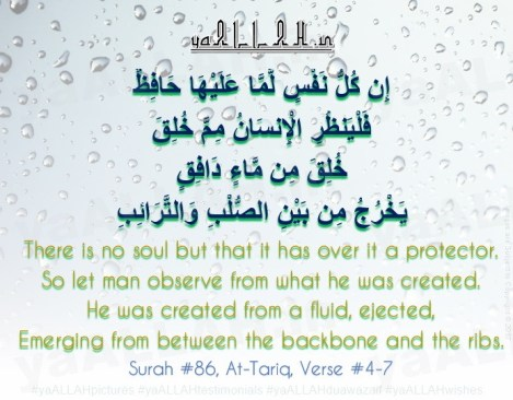 surah-at-tariq-verse-4-7-In-kullu-nafsin-lamma-alayha hafizun-Irregular Periods-yaALLAH