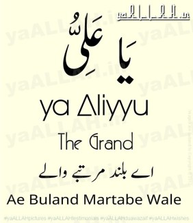 ya-Aliyyu-ya-Ali-Muslim Religion Best Marriage Proposal Dua-yaALLAH