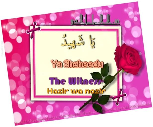 ya shaheedo meanings-benefits-The Witness