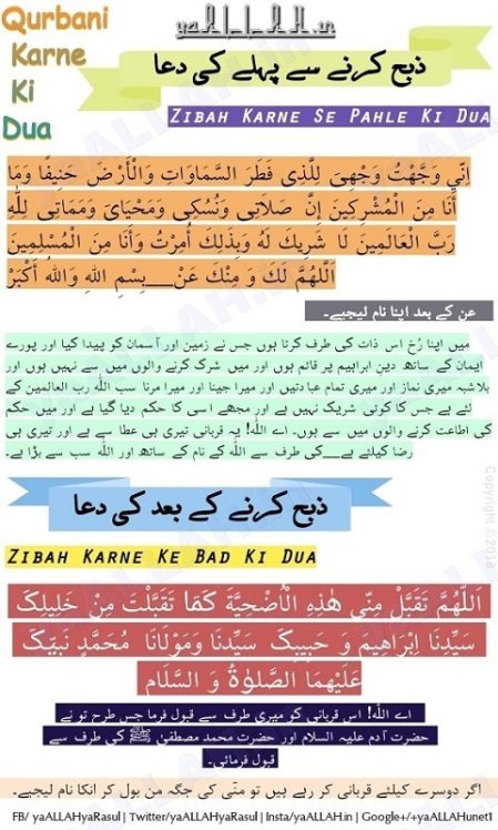 Bakra Zibah Qurbani Karne Ki Dua With All Translations (HD Pictures)