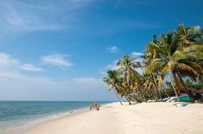 Plage sable mer et cocotiers