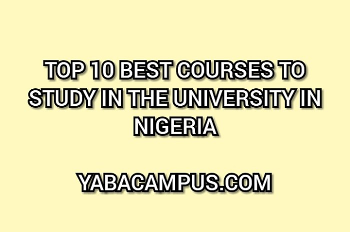 Top 10 Best Lucrative Courses To Study In School In Nigeria 2020