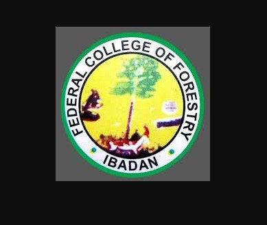 Federal College of Forestry, Ibadan Admission Form for 2020/2021 Academic Session