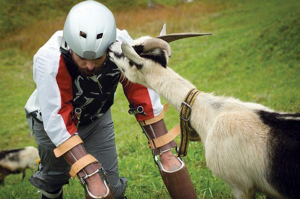 Goat Man1