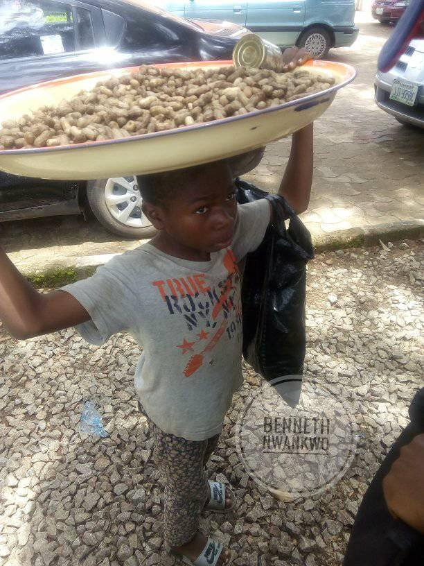 9 year old groundnut hawker