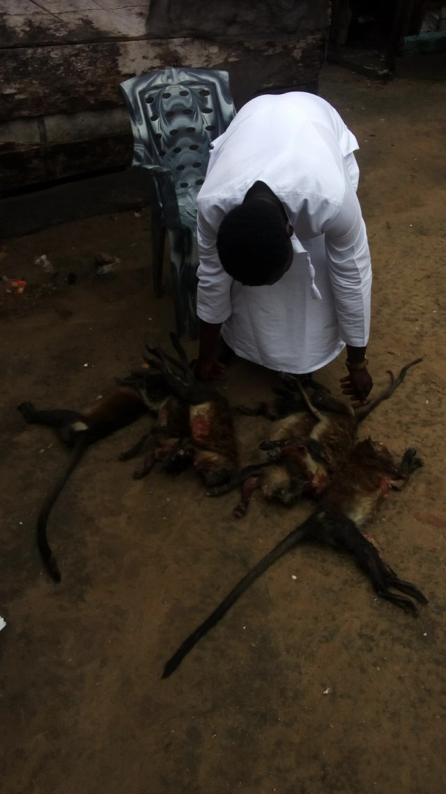 Nigerian Man Prepares Monkey Pepper Soup