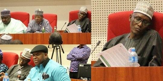 Nigerian Senator Doze Off During Senate Hearing On…