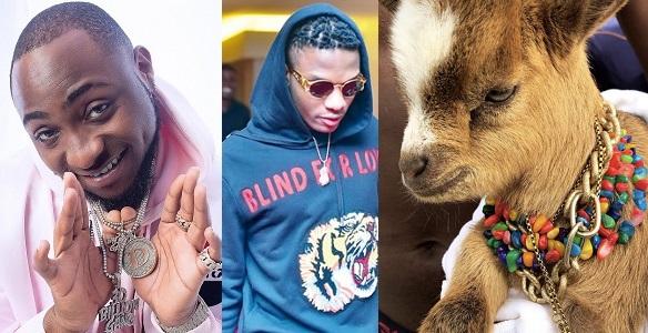 Wizkid's new pet goat