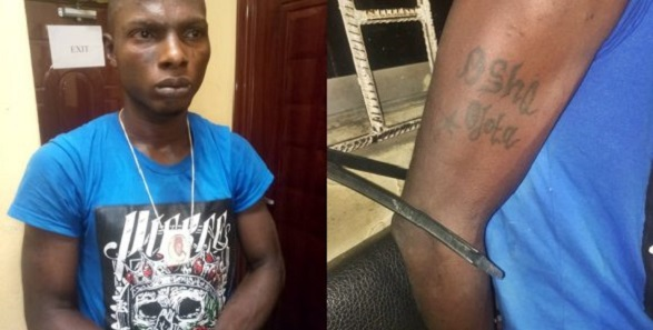 notorious robber caught