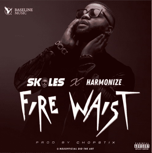 Skales ft. Harmonize – Fire Waist