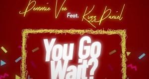 Demmie Vee You Go Wait Lyrics