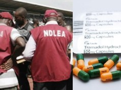 NDLEA intercepts 581 million Tramadol tablets