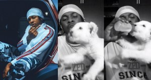 Davido, Phyno, Simi and other celebrities react after Runtown showed off his new pet Lion