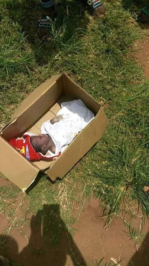 Dead newborn baby found