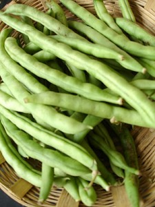 10 amazing health benefits of French beans