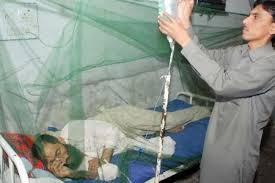 Dengue fever- Causes symptoms and treatment