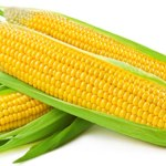 Benefits Of Sweet Corn For Skin And Hair