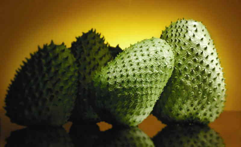 health benefits of Guanabana Fruit