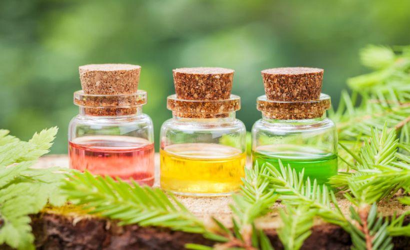 Famous Essential Oils