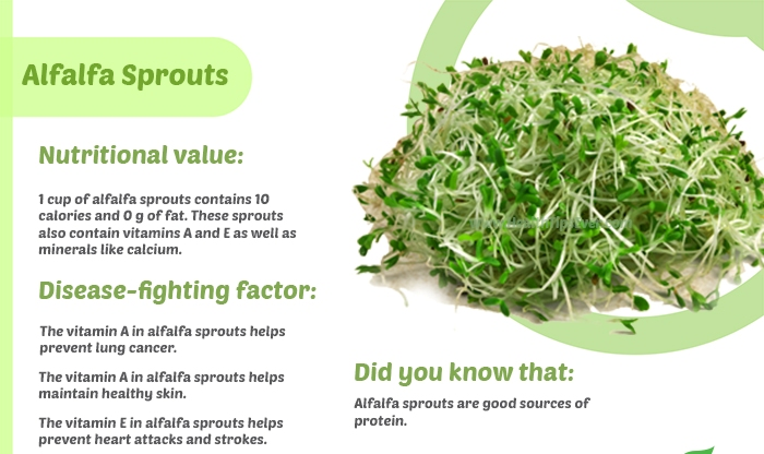 Unbelievable Health Benefits Of Alfalfa Sprouts,Alfalfa Sprouts