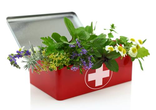 How to Make Natural First-Aid Kit