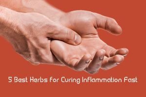 5 Best Herbs for Curing Inflammation Fast