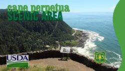 Cape Perpetua Visitor Center, Exhibits, Programs, Guided Walks
