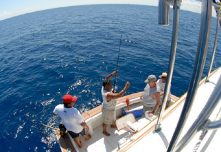 Yacht Rentals in Cancun private Luxury fishing yacht charter in cancun sport fishing isla mujeres puerto morelos puerto aventuras cozumel fishing boat fishing charter fishing trip Caribbean fishing charter Hatteras 46 feet in cancun