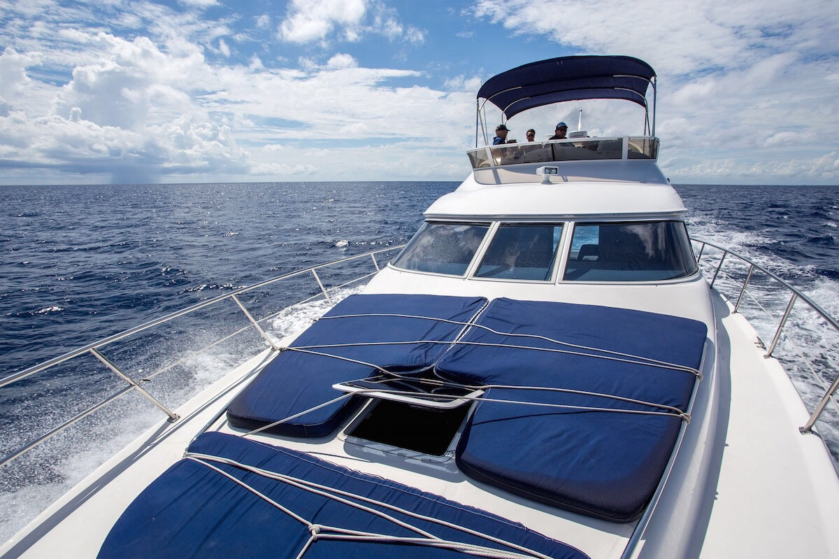 Yacht Rentals in Cancun private Luxury yacht charter in cancun luxury charter puerto aventuras puerto morelos holbox isla mujeres contoy island large charter over the Mexican Caribbean private luxury service catamaran charter open bar Puerto Aventuras Sea Ray 40 feet