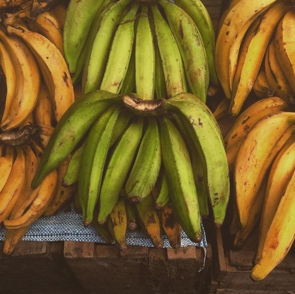 Banana Platanos