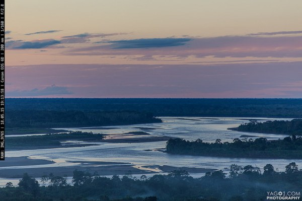 Amazon River Landscape