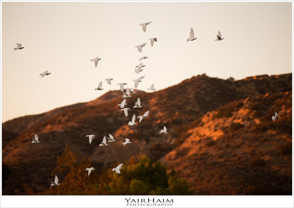 hummingbird-nest-ranch-wedding-photography-Yair-Haim-21