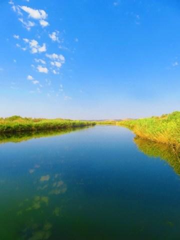 Iran désert varzaneh wetlands