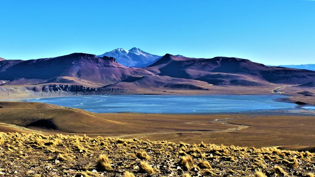Bolivie Sud Lipez lagune