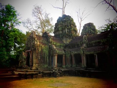 Cambodge Angkor temple Ta Prohm
