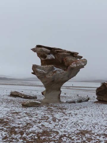 Bolivie Sud Lipez El arbol de piedra