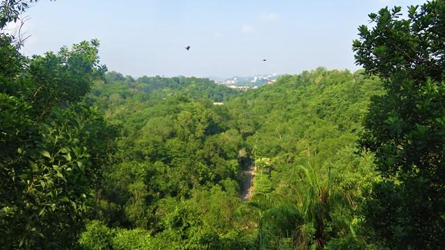Brunei parc nature randonnée
