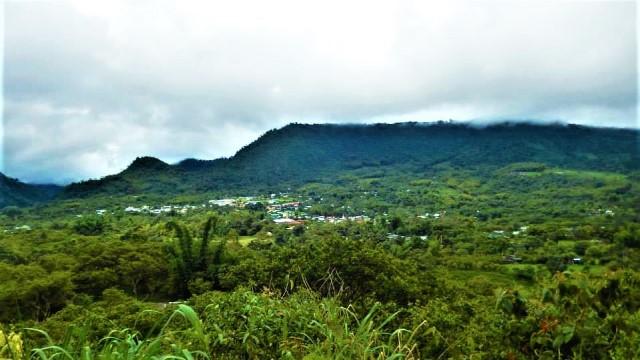 Equateur Mindo rain forest