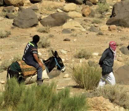 Jordanie vallée de dana bédouins
