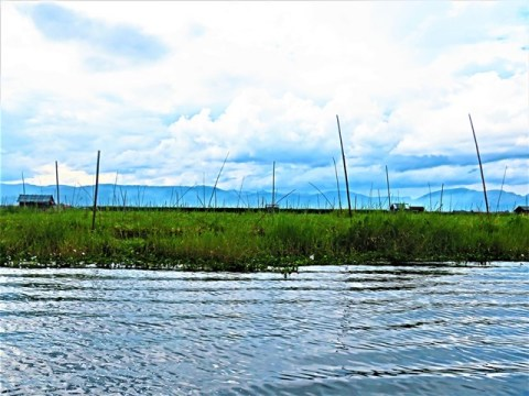 Myanmar Lac Inle jardins flottants de Kela