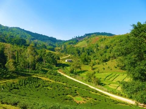 Thaïlande Chiang Rai Triangle d'Or