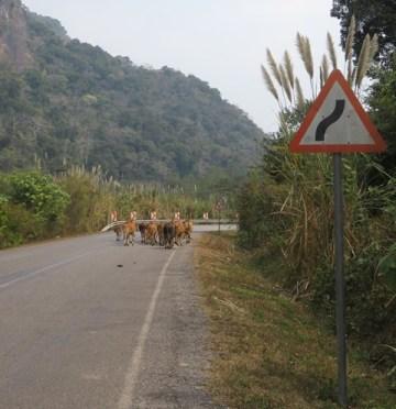 Laos boucle scooter de Thakhek route