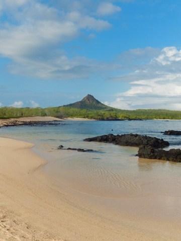Galapagos ile Santa Cruz Cerro Dragon
