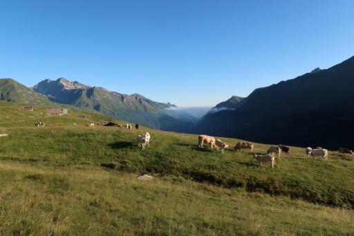 Trek des 3 cirques vaches