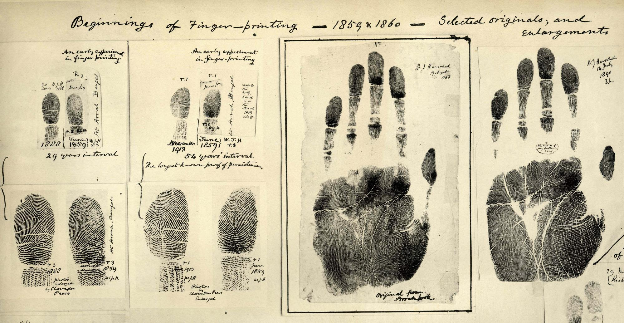 Foregone Forensics A Brief History Of Crime Solving