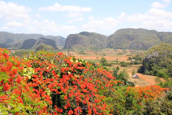 Viñales Valley, Pinar del Rio, Cuba