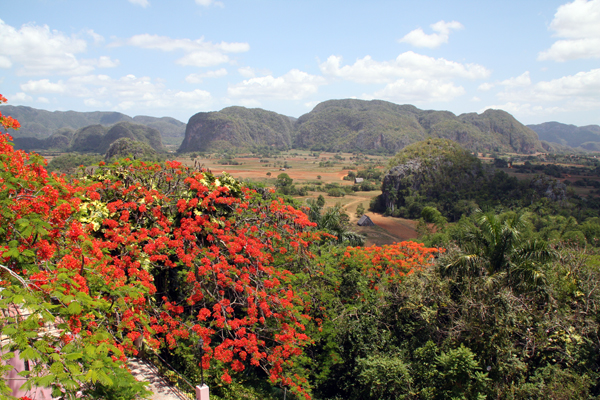 the Vinales Valley, Cuba