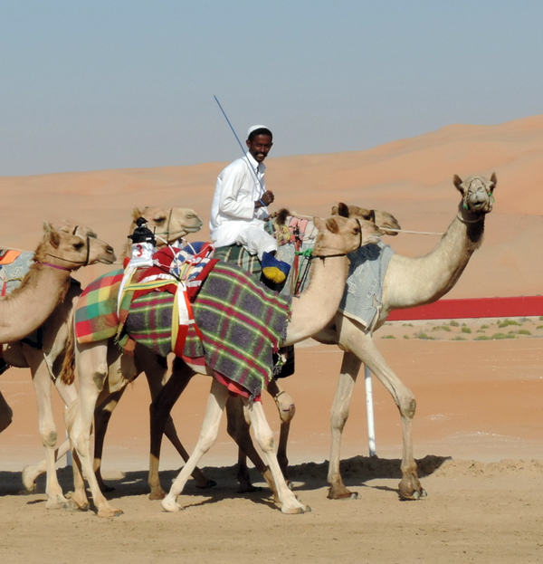 camelboy on the road between Oman and Abu Dhabi